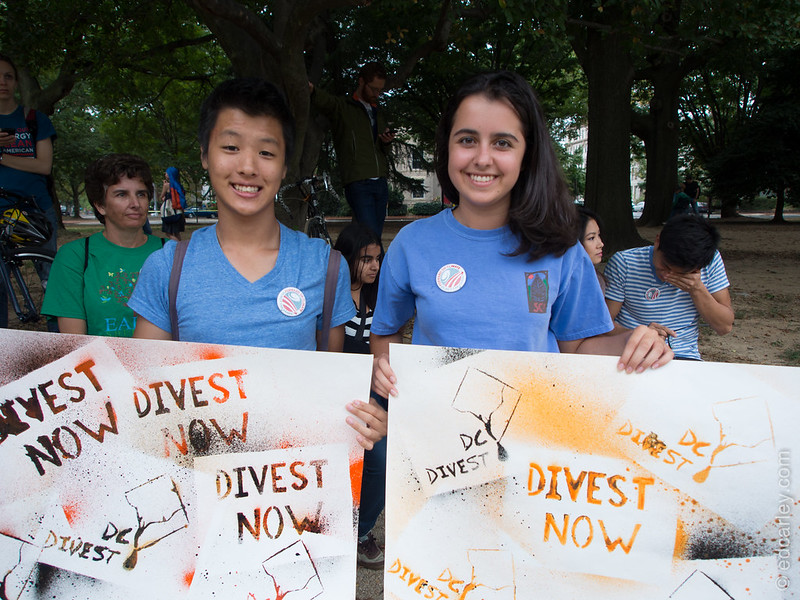 DC Divest, Draw The Line, Draw The Line DC