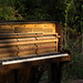 20130505-sam_bailey_forest_piano-007