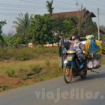 03 Viajefilos en Laos, Bolaven Plateau 63