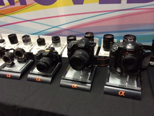 Line up of Sony cameras