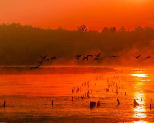 Muscatatuck NWR Sunrise