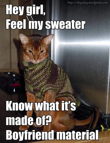 heygirl-sweater