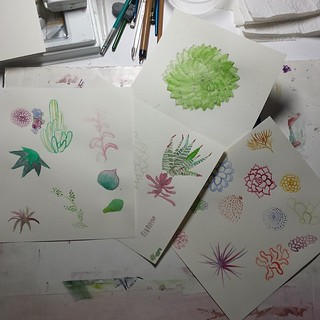 There's probably something here I can use... #succulents #makeartthatsells