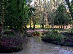 IMGP2132_Coombe Country Park - The Bide Brook_By Craig