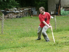 mowing with a scythe