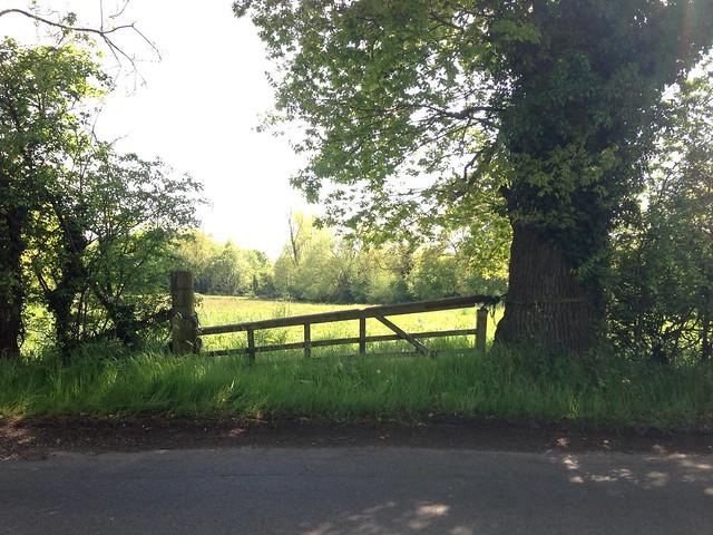 Gate, Nar Valley Way