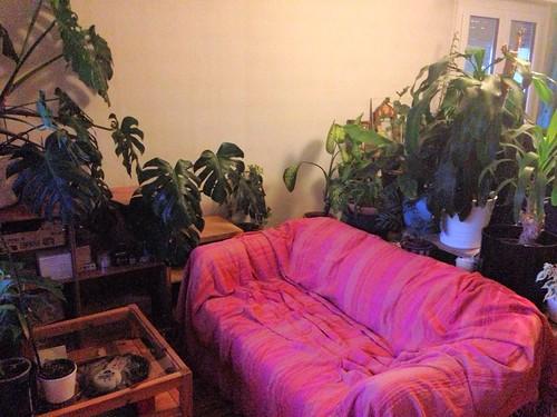 New sofa corner