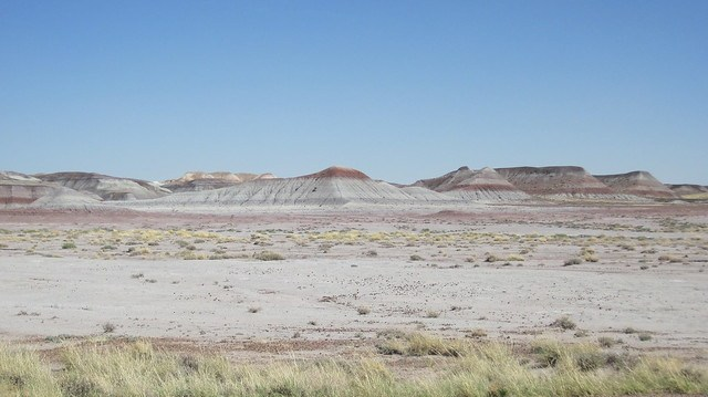 Picture from Petrified Forest National Park