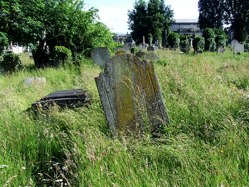 cemetery meadow 5