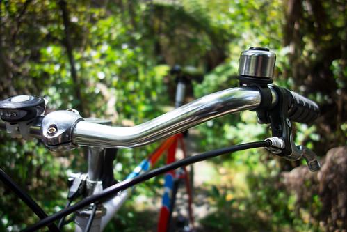 Denis The 12-Speed Goes Mountainbiking