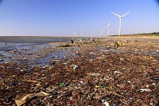 東脅西毒 至少海有你 - 臺灣環境資訊協會