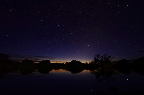 Stars over the Pampas 1