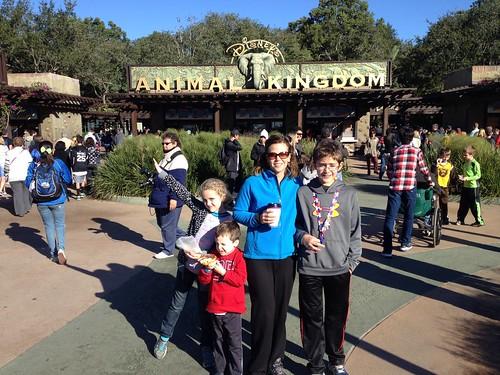 Disney Day 4 - Animal Kingdom & Downtown Disney