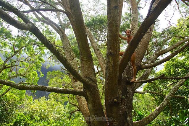 naturist  0001 Iao valley, Maui, Hawaii, USA