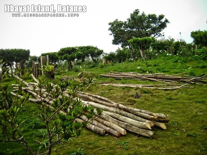 Mount Karoboboan