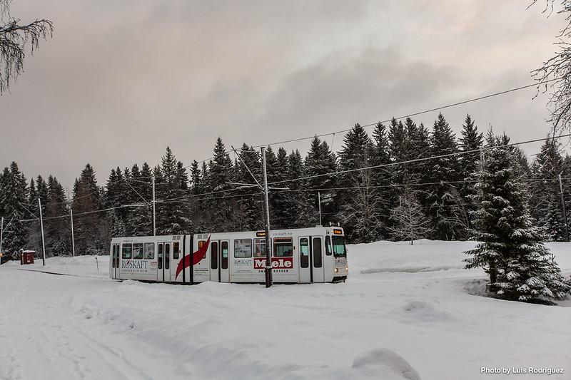 Trondheim-20