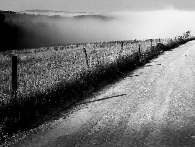 Downland mist