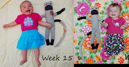 week 15 compare