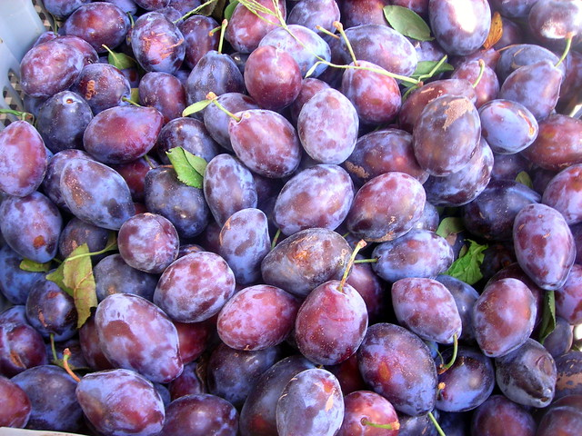 Red Italian plums