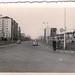 Viale Zara 1953