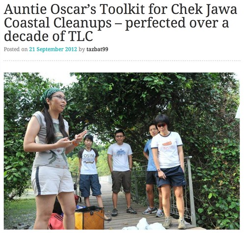 Auntie Oscar's Toolkit for Chek Jawa Coastal Cleanups – perfected over a decade of TLC | News from the International Coastal Cleanup Singapore