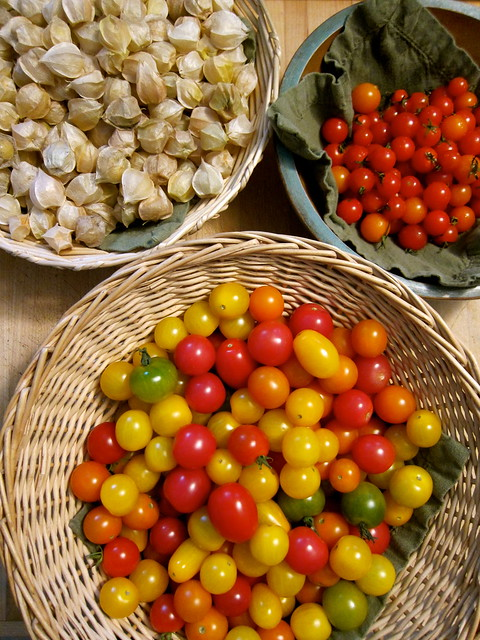 Putting Up: Sweet Cherry Tomatoes