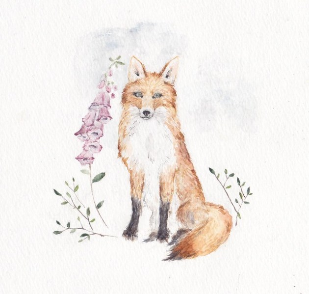 Foxes and love