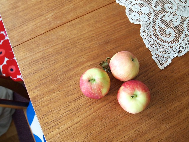 The first Norwegian apples.