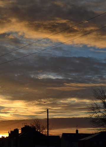 Cathays Sunrise by Rose Clark