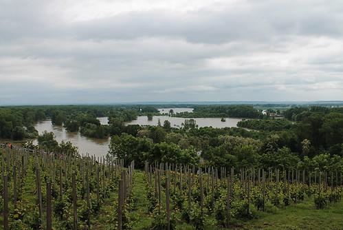 Flooded confluence of the Vraňansko-hořínskí plavební kanál, the Labe and the Vltava, June 4th 2013, from the top of Mělník.