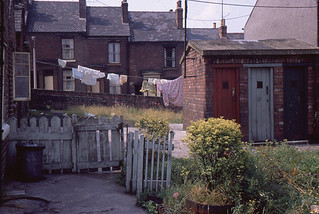 Daniel_Hill_St_Backyard_to_Harold_St_1970s_AB010