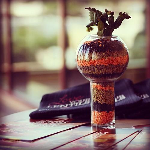 Cool @cdnlentils Canadian Lentils Recharge Lounge decorative lentil & cactus vases @ #blogherfood