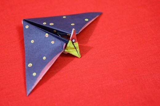 Origami Tupuxuara