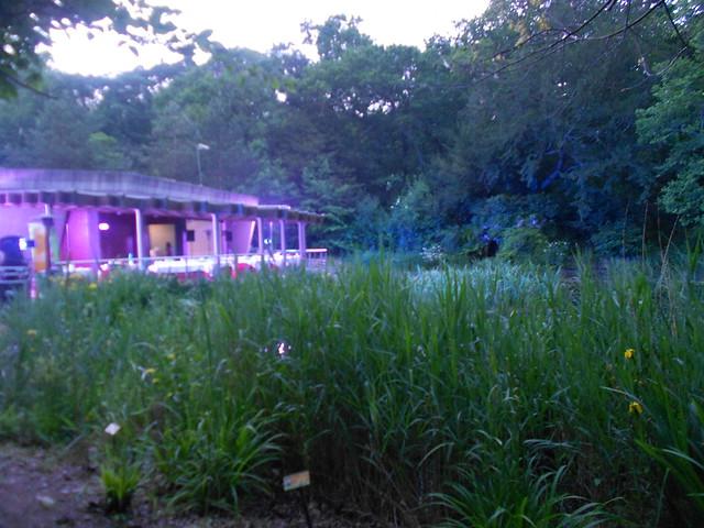 Pabellón Linneo Jardín Botanico Atlántico