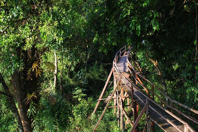 Nam Cat Tien Naitonal Park