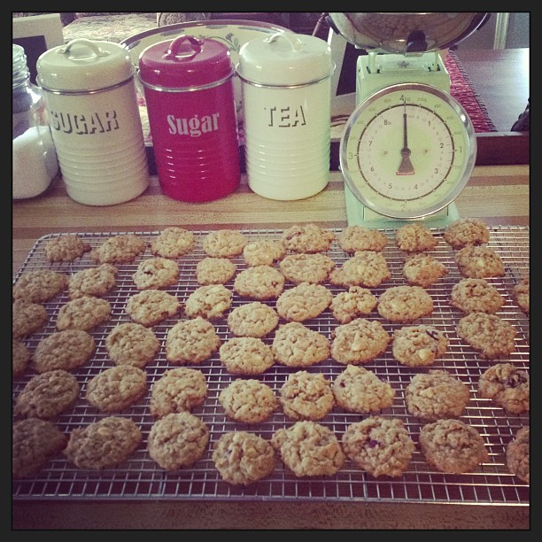 May 25 - half past three {just finished a batch of cranberry & white chocolate oatmeal cookies} #photoaday #cookies #baking #kitchen