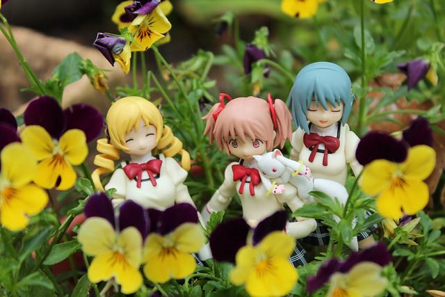 flower pals