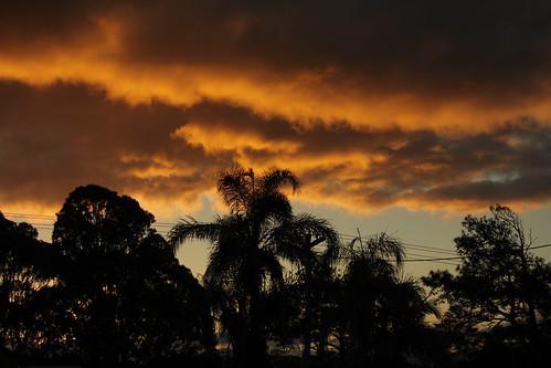 IMG 3580 Fabulous Clouds