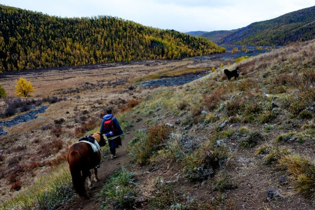 Horse trek in Mongolia IKILOMALLA matkablogi travel blog (7)