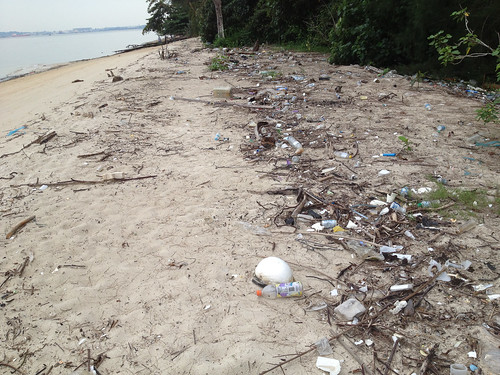 37_Trash_on_PulauSerangoon-14nov2013[IvanKwan]