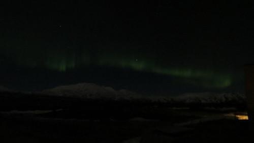 aurora 2.19