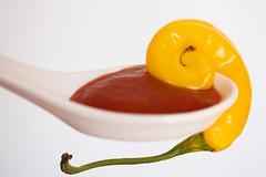 Rhabarber (Chili) Ketchup