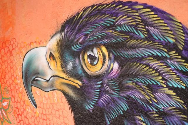 Eagle of the Path