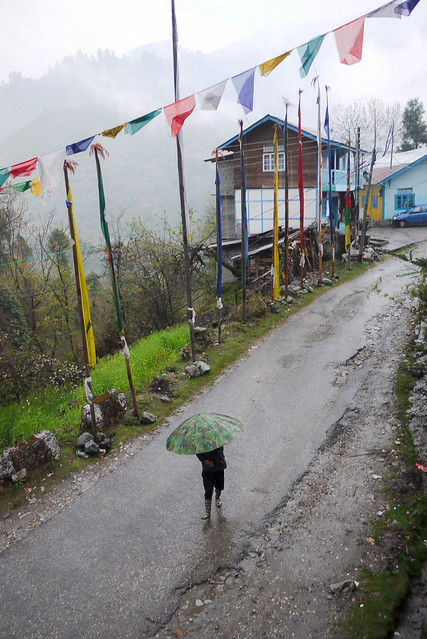 india_sikkim_day4_53