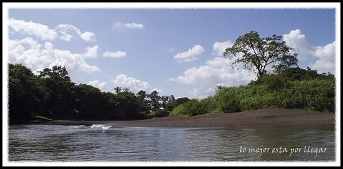 CANALES DE TORTUGUERO, COSTA RICA POR LIBRE