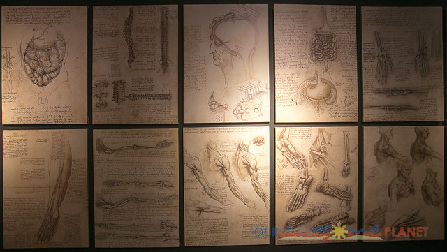 Da Vinci The Genius-56.jpg