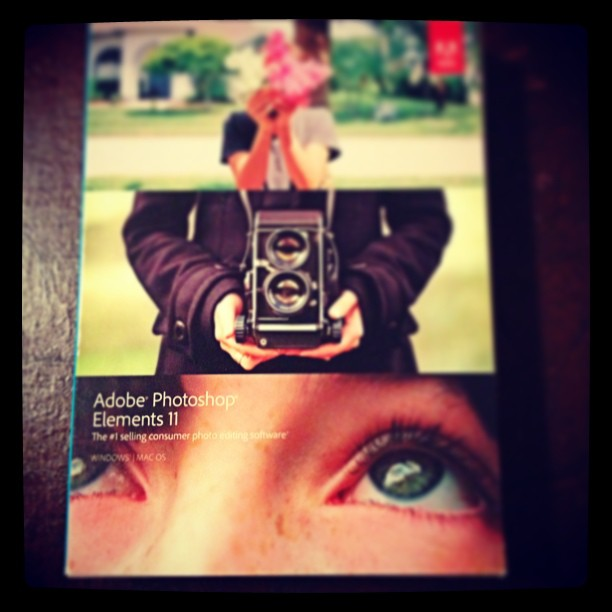 June 26 - new toy {just got 'Adobe Photoshop Elements'; can't wait to see what it can do!} #photoaday #newtoy #program #photoshop