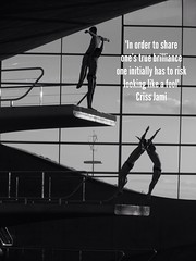 Diving (with quote) by thehutch