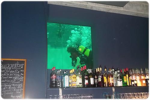 Nemo 33 (4)