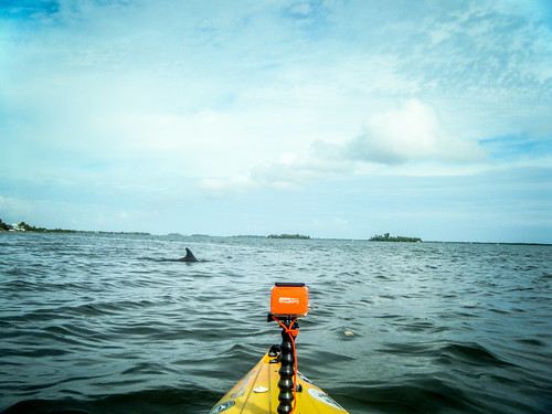Indian River Paddling-027